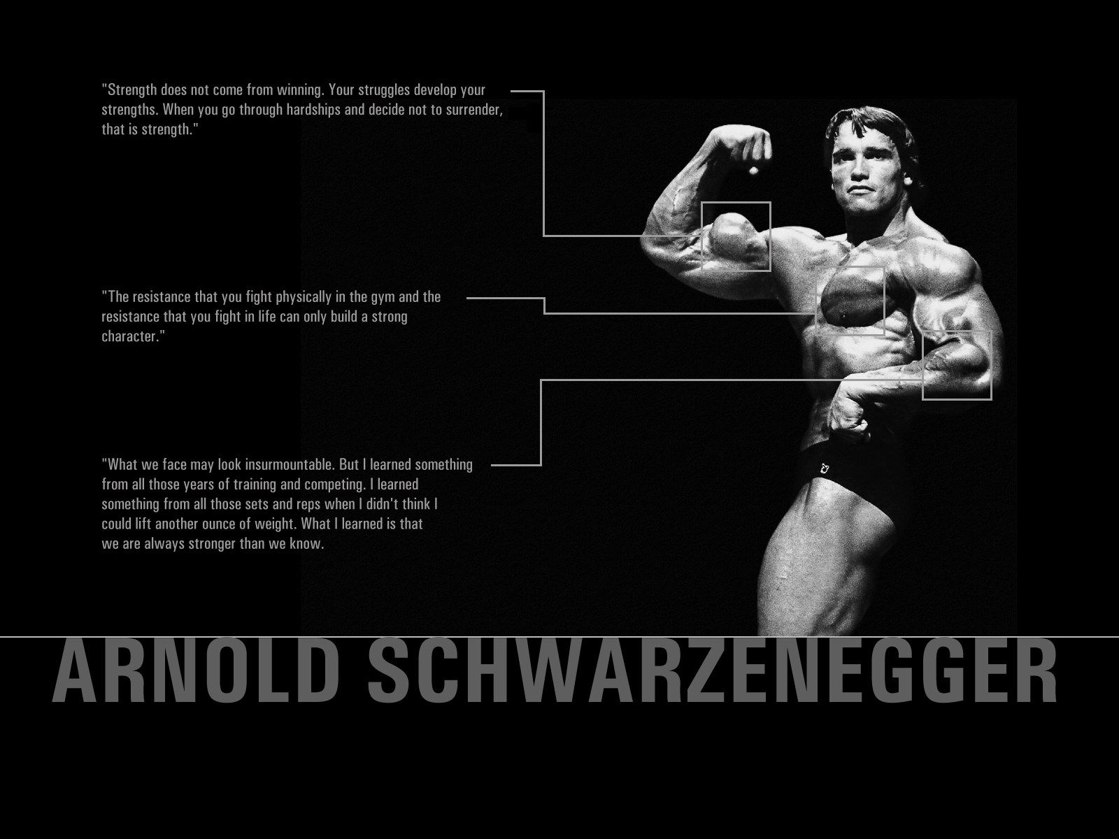 Amazing Bodybuilding Hd Wallpaper