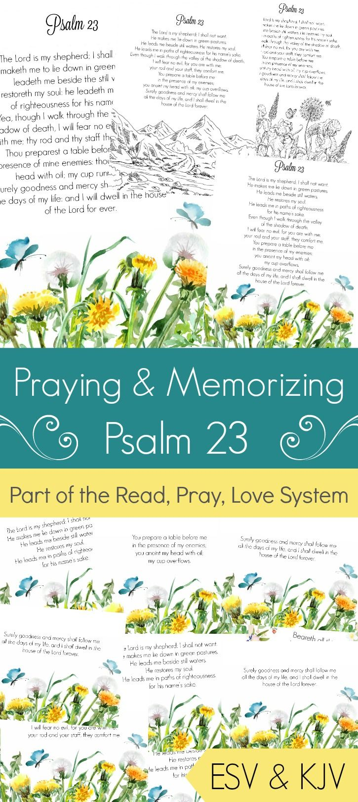 Praying and Memorizing Psalm 23 (Printable & Coloring Pages)   1st ...