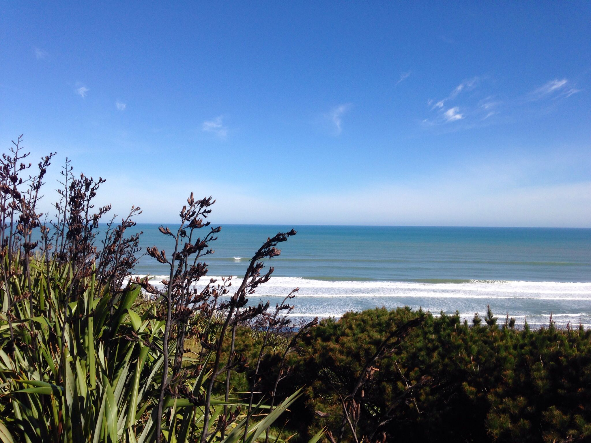 Kariotahi Beach, South Auckland. By Geeta Uka