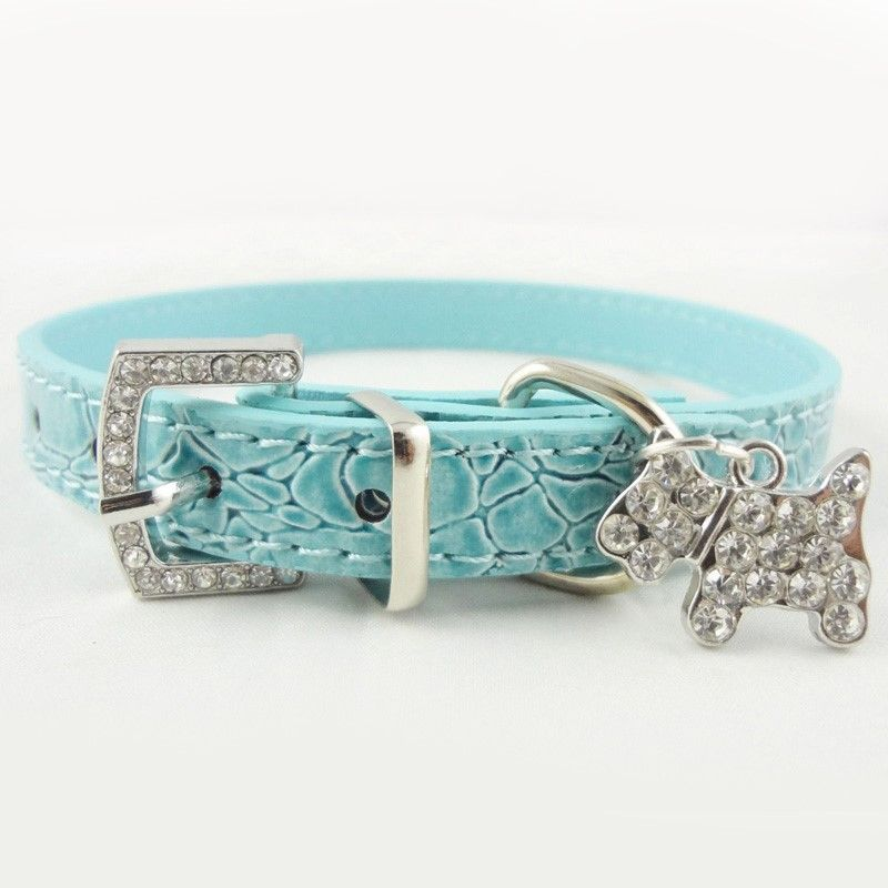 Just A Simple Beautiful Dog Collar Check Out The Little Dog