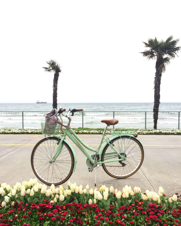 bicycle bike cycle bisiklet Bisiklet