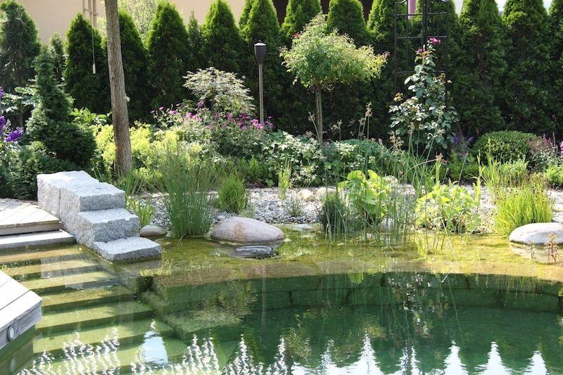 piscine naturelle en allemagne eco pools natural. Black Bedroom Furniture Sets. Home Design Ideas