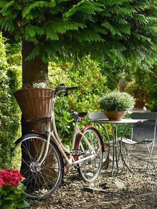 A Bike Under Tree At Rose Cottages And Gardens
