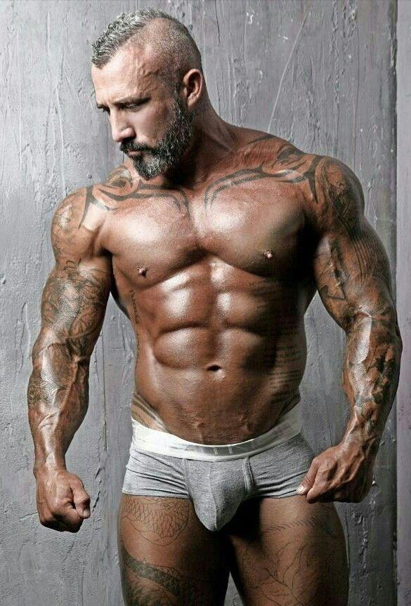 Well muscular hung bears