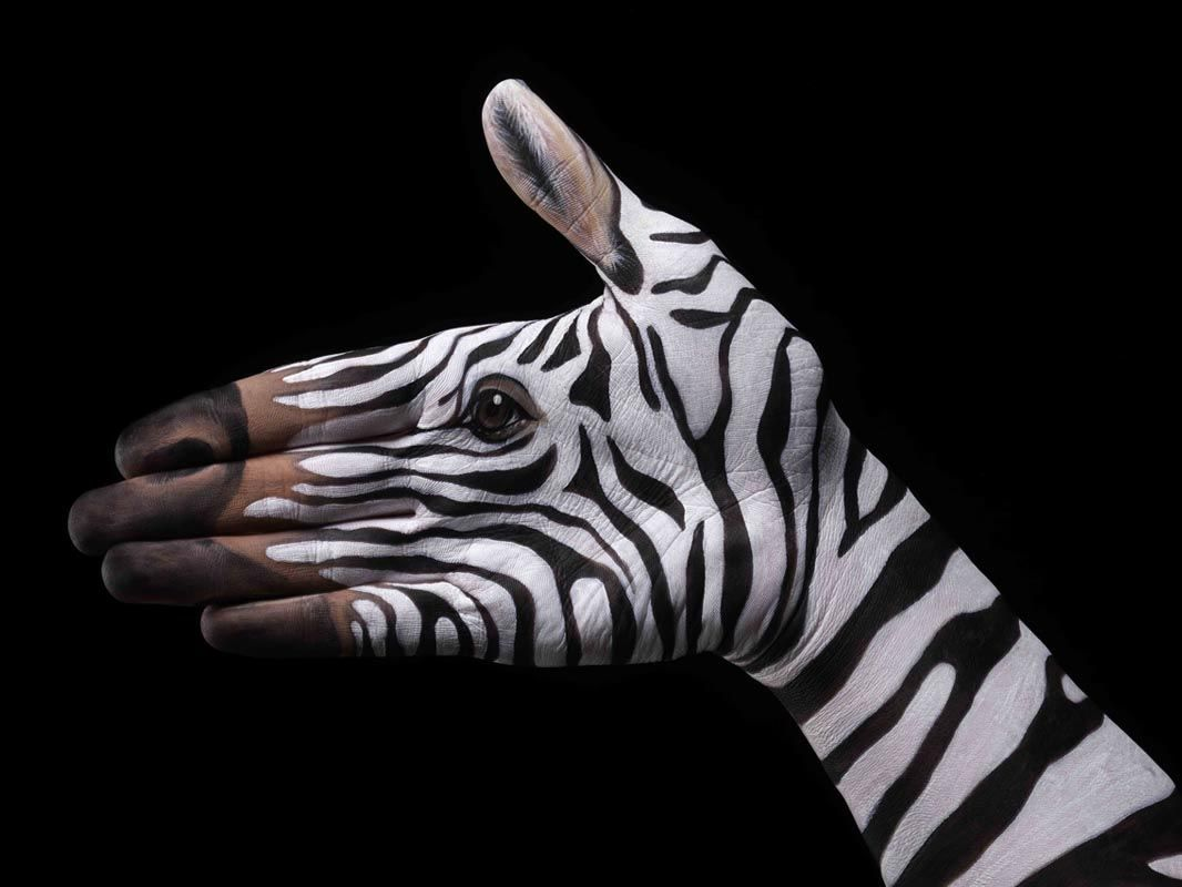 Animal Portraits On Hands Transform Definition Of Hand Painted In 2020 Hand Painting Art Body Art Painting Hand Art