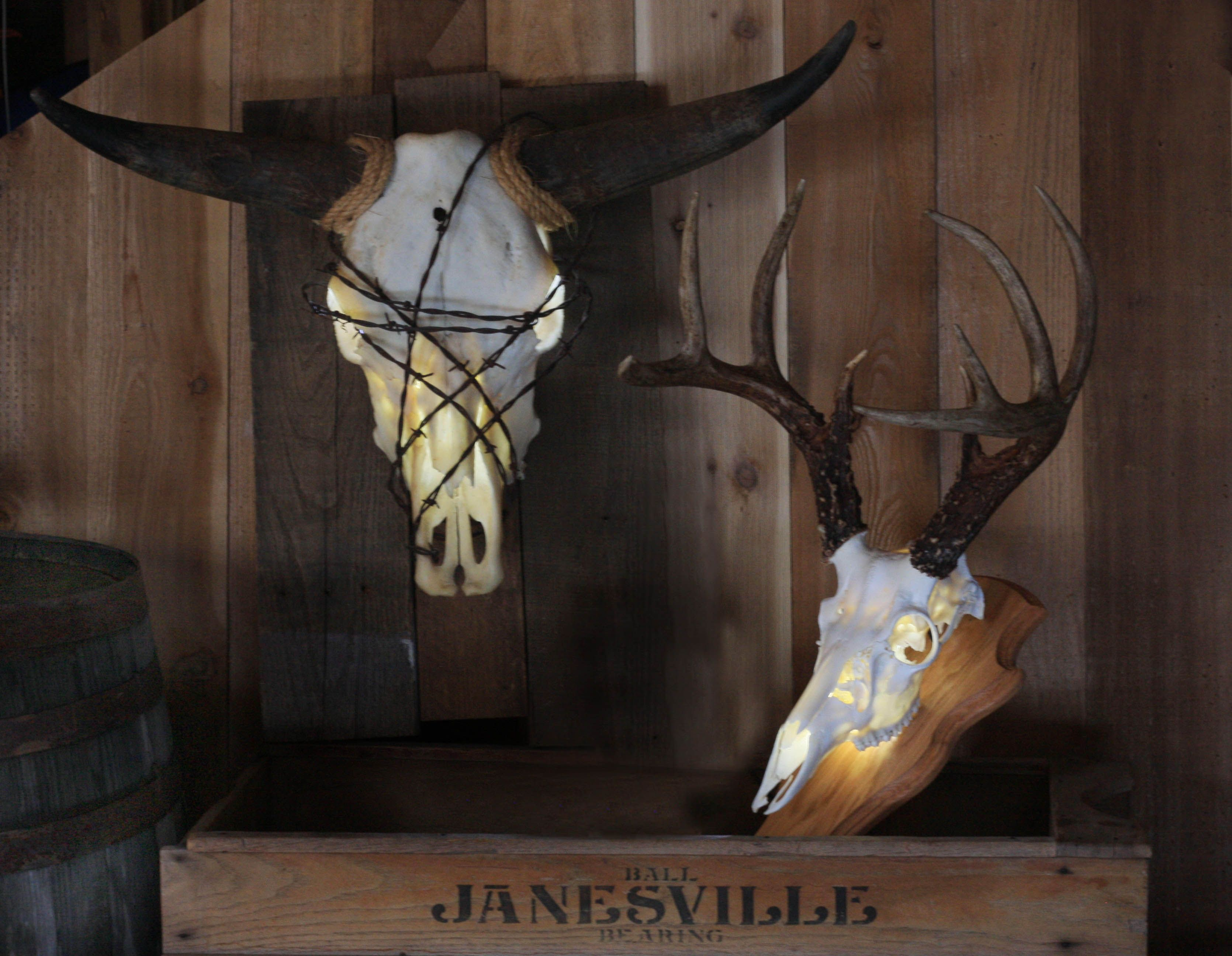 Deer skull mount ideas - Decorate Your Home Or Cabin By Lighting Up Your European Mount With A Light Kit From