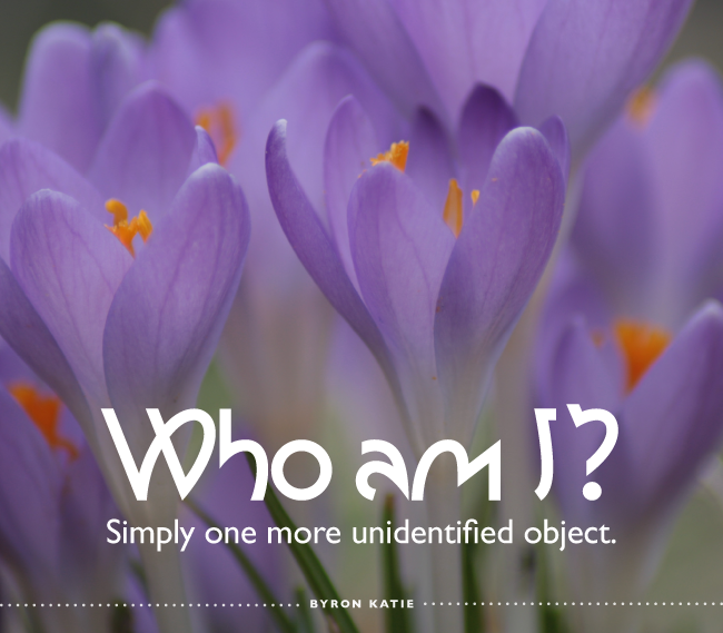 Who am I? Simply one more unidentified object. —Byron Katie
