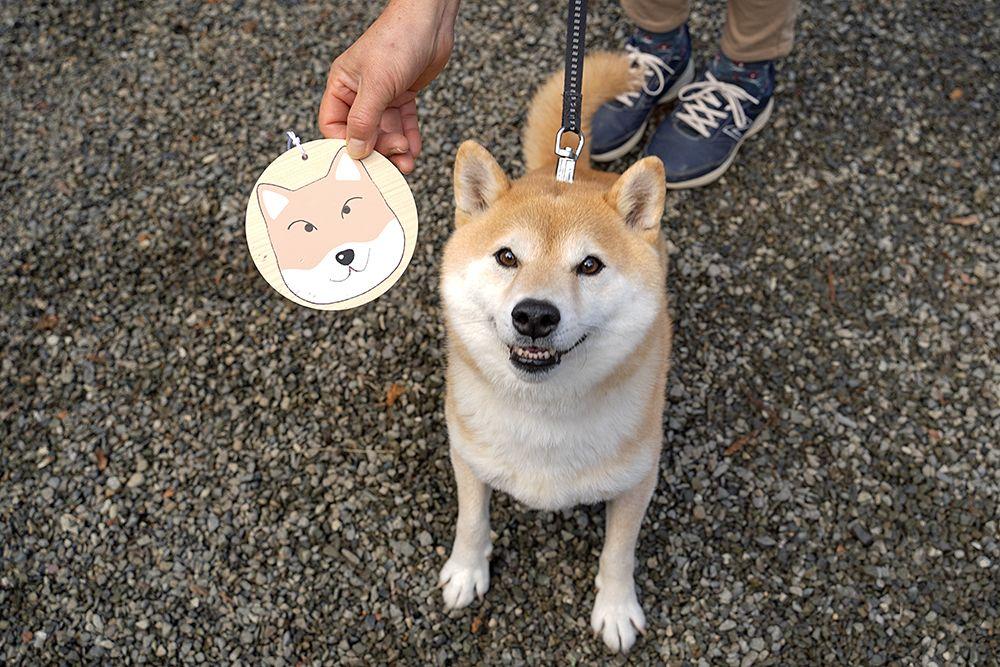 犬と神社へ 母の書いた絵馬は本物そっくりかも Inubot回覧板 Esseonline エッセ オンライン 犬 ペット 絵馬
