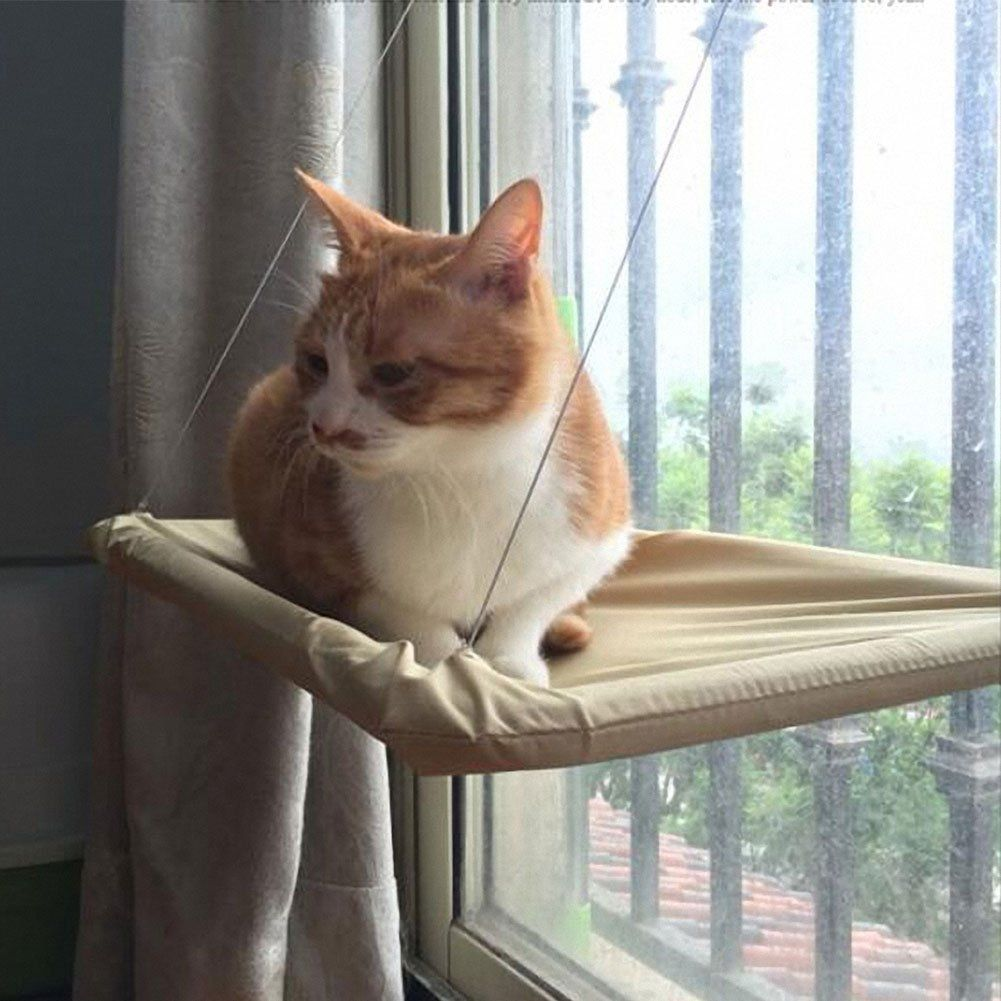 Window bed for cats  omem cat bed perch on window hammock hanging seat rest sunbathing