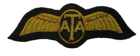 WWII ATA Wings (Air Transport Auxiliary). In Britain, the RAF ATA (Air  Transport Auxiliary) ferr… | Gorgeous leather, Outdoor outfit, Leather  jacket men
