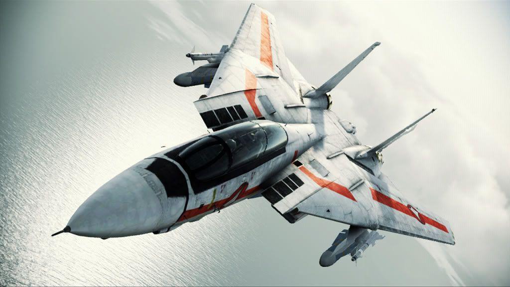 Ace Combat Fighter F 14 With Macross Paint Scheme Very Cool