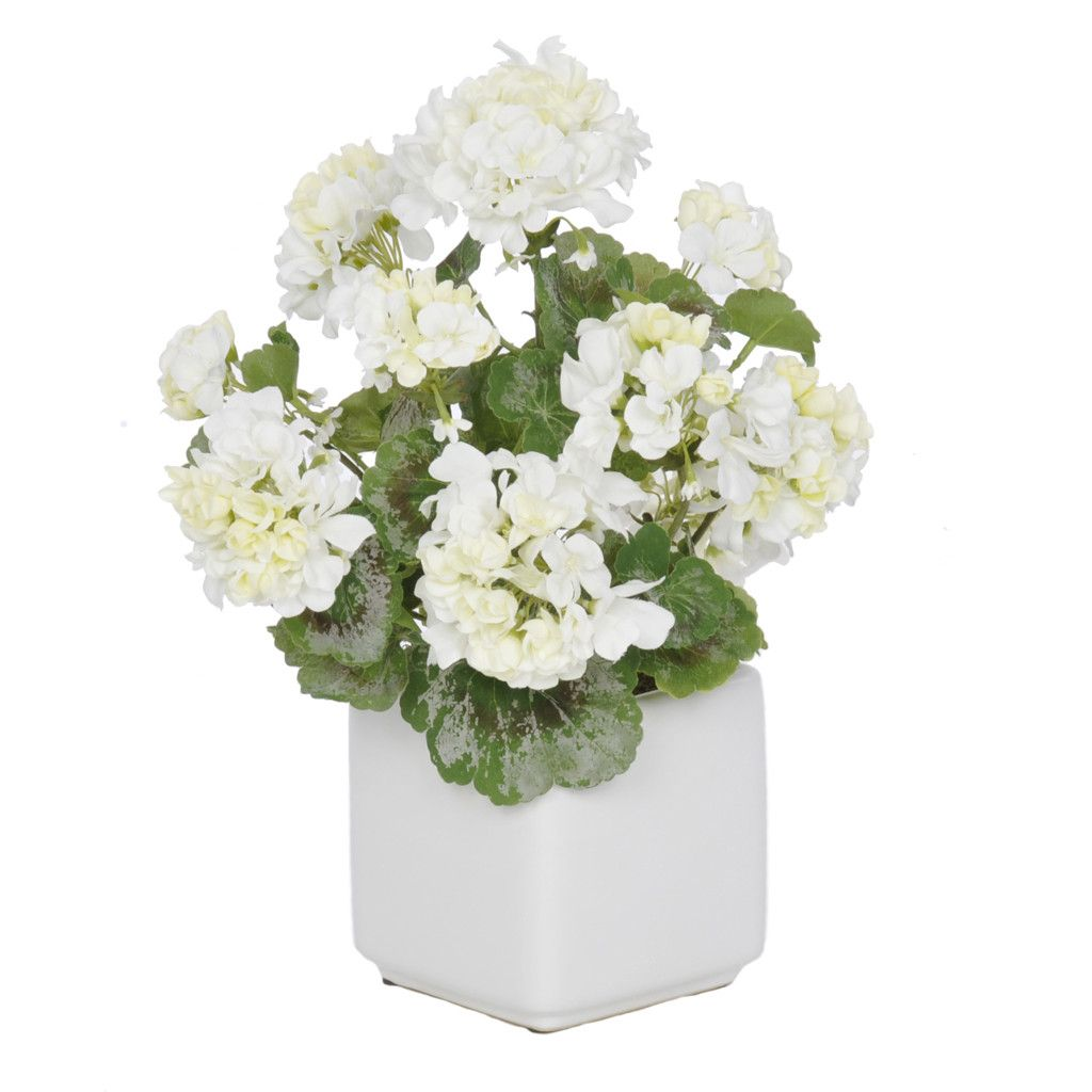 Gerani Artificiali Artificial White Geranium In White Cube Ceramic Vase Products