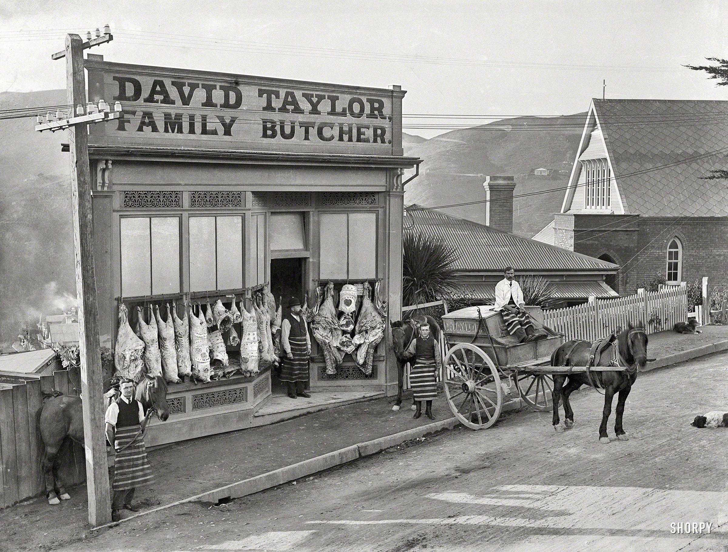 1910. Wellington, New Zealand. \