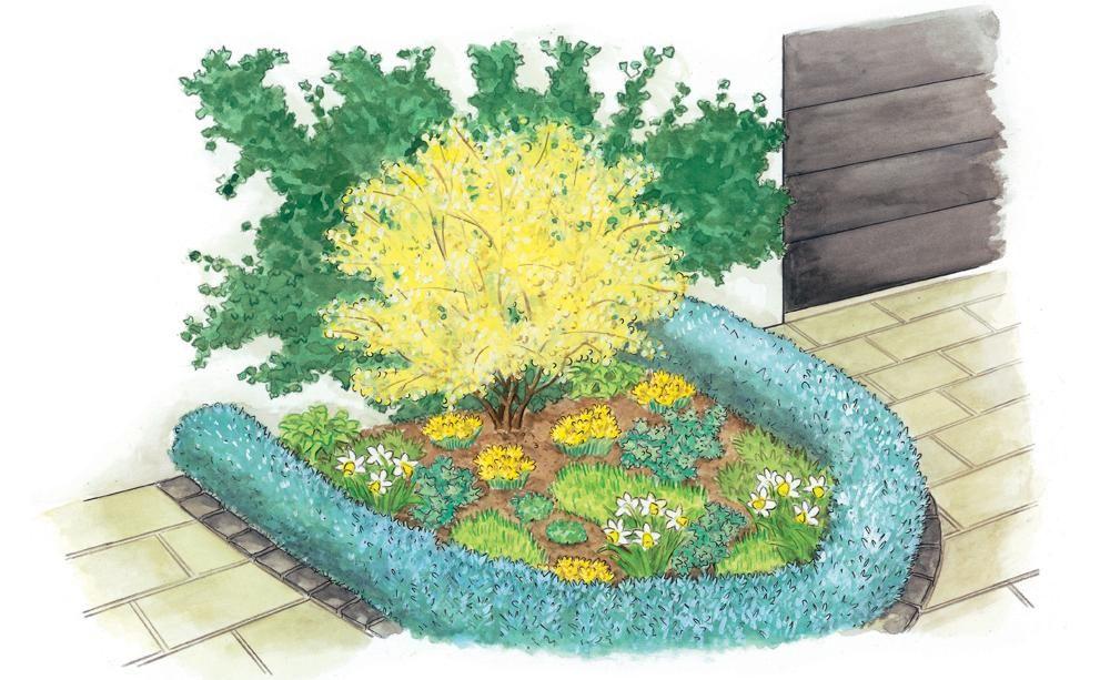 Zum nachpflanzen ein fr hlingsbeet f r den vorgarten - Pflanzplan vorgarten ...