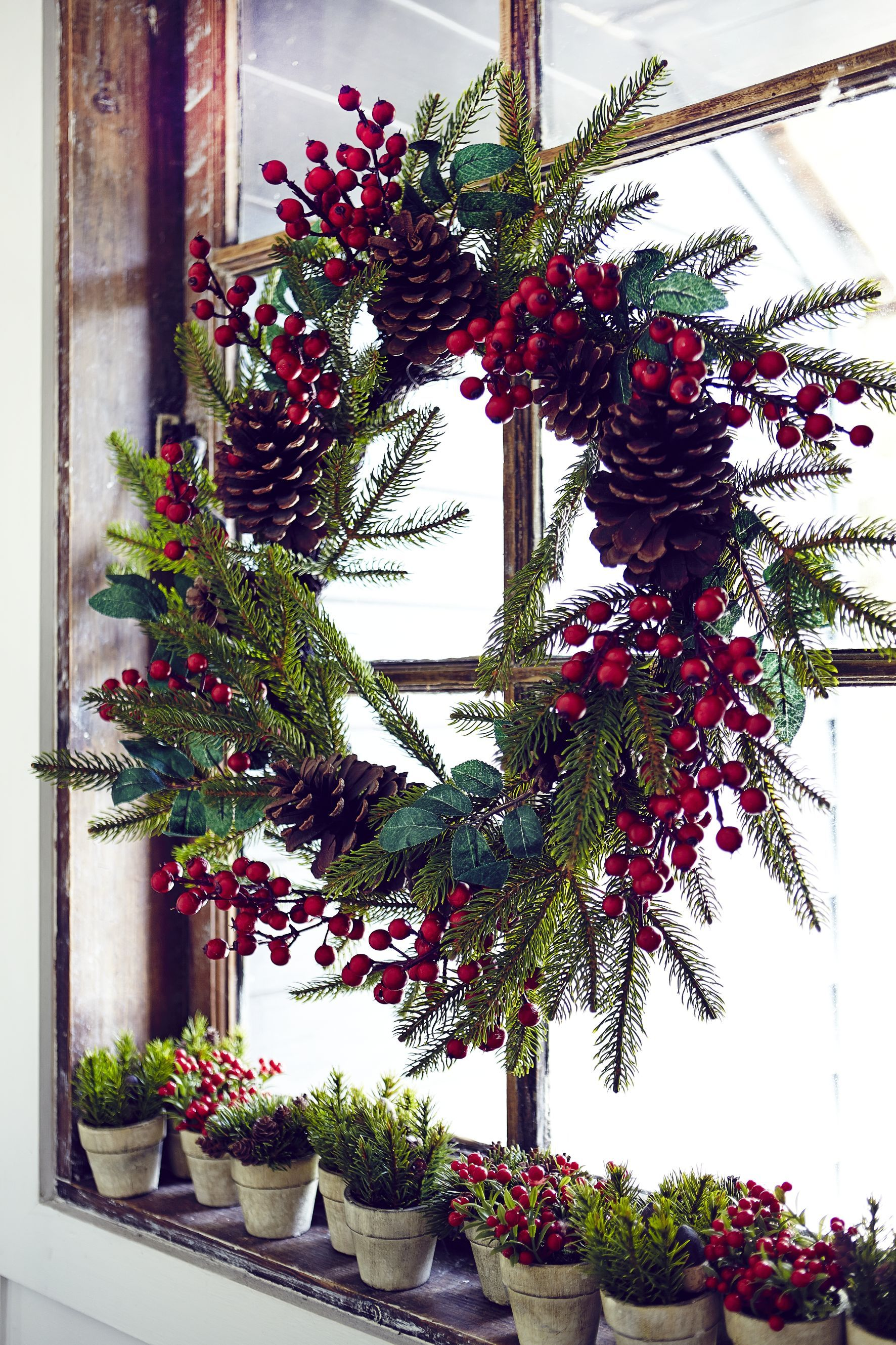 John Lewis Premium red berry and pine cone wreath £40 Mini potted