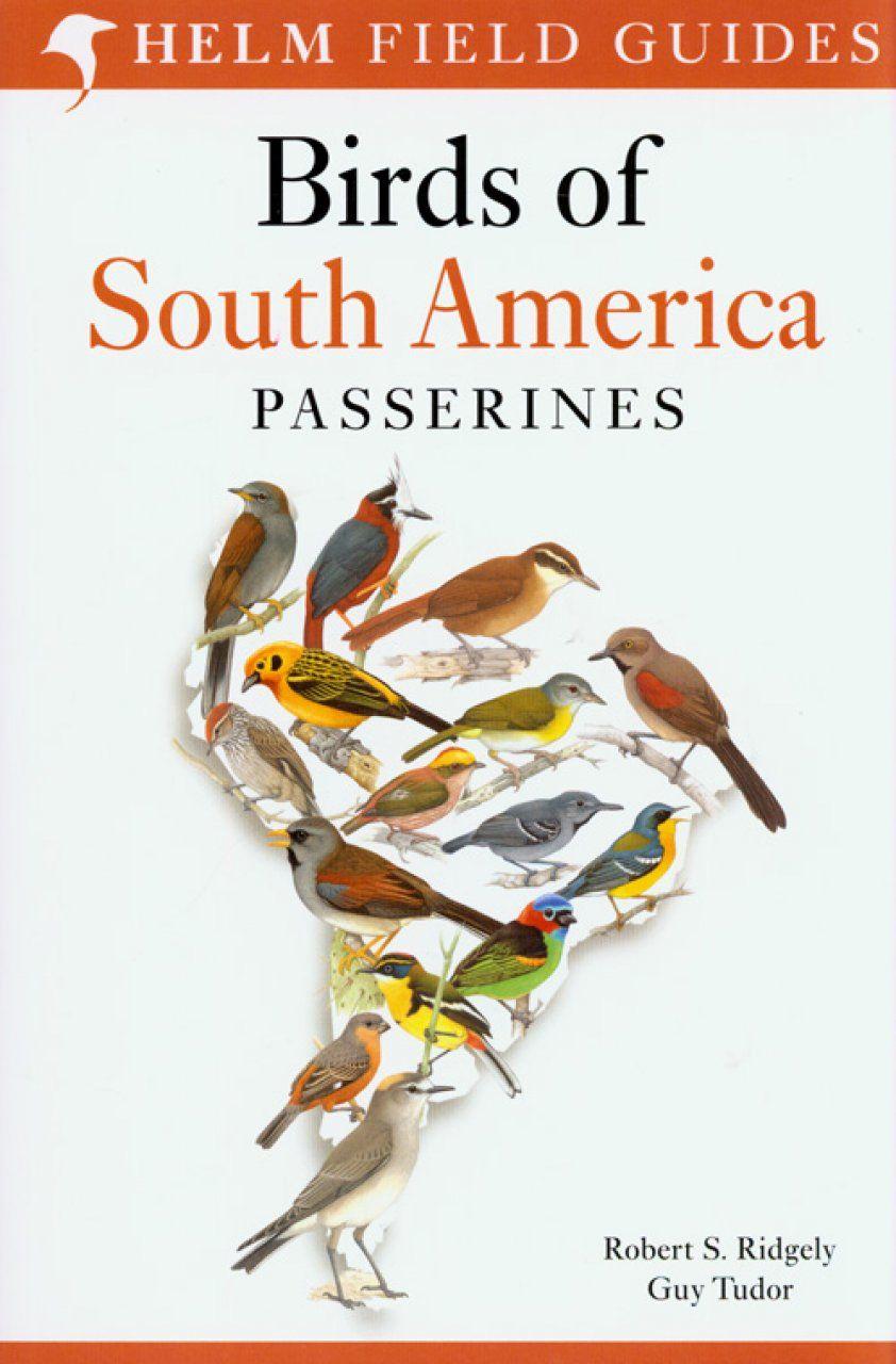 Oiseaux D Amerique Du Sud Passereaux Assurance Voyage Amerique Du Sud Voyage Amerique Du Sud Voyage Amerique Amerique Du Sud