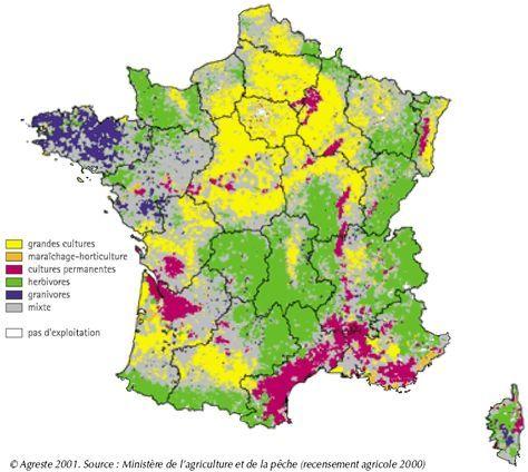 Carte De France Agricole Carte De France France Agricole Geographie