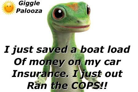 Geico Quotes Pinsue Ferryman Wiles On Quotes Sayings Funny Signs And Etc .