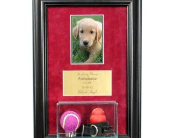 pet memorial picture frame with eng and display case dog memorial cat memorial in pet supplies pet memorials urns - Dog Memorial Frame