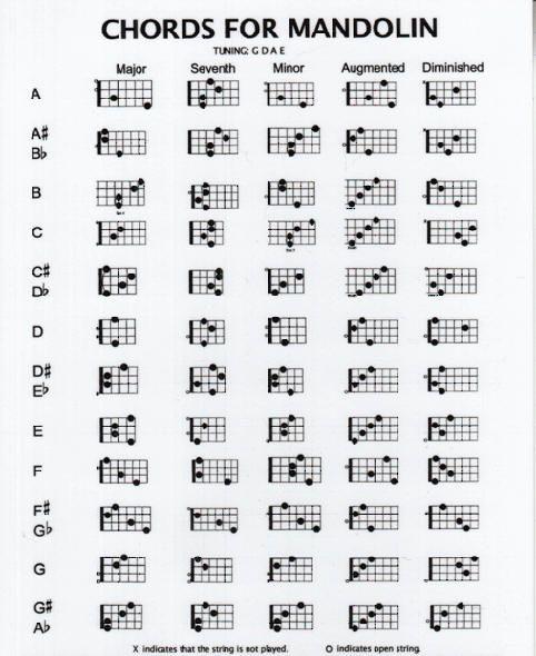 Beginner Mandolin Lessons - Mandolin Compass