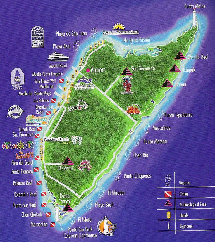 Cozumel we visit at least once a year and always find something new plus you can spend a week - Cozumel dive packages ...