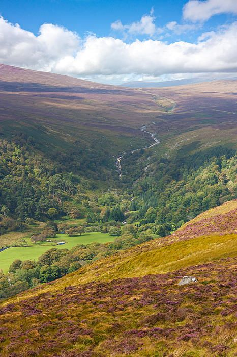 Multicolored Hills Of Wicklow I. Ireland Photograph by ... |Wicklow Hills Ireland