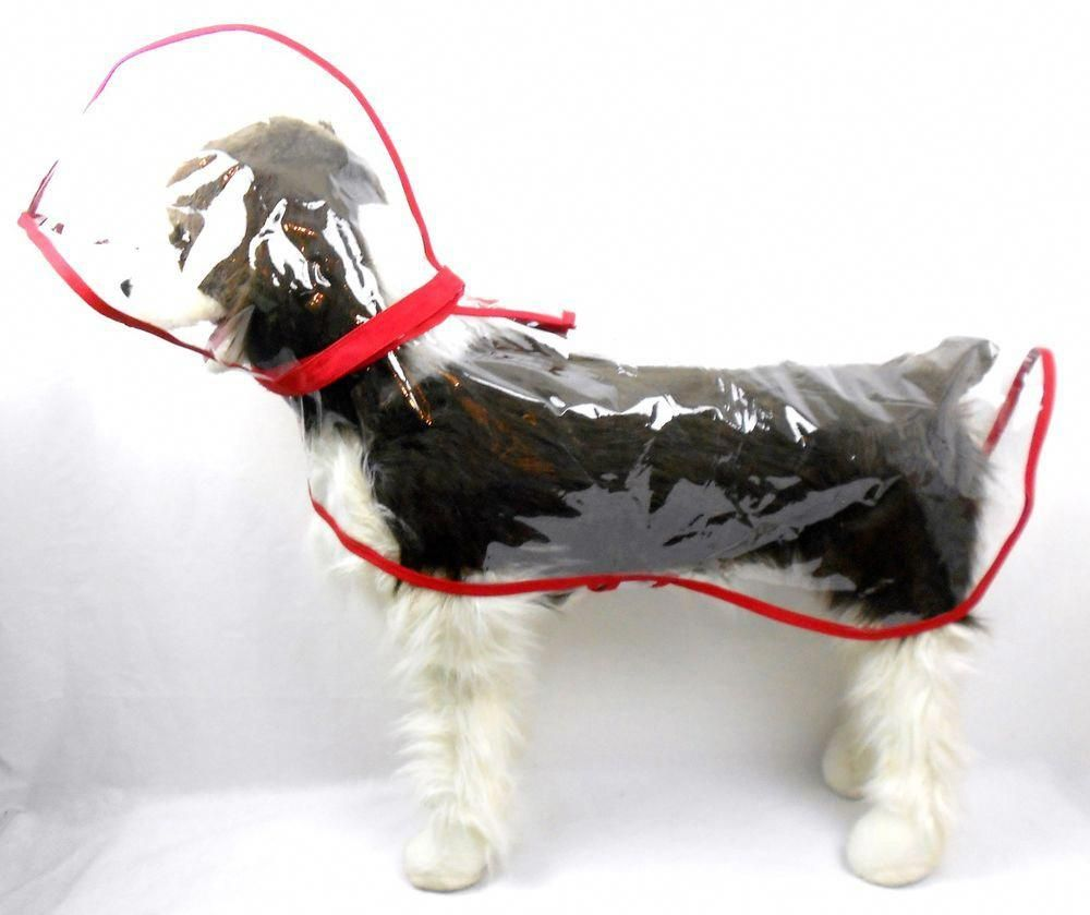 Large dog red unisex seethrough clear mm vinyl raincoat