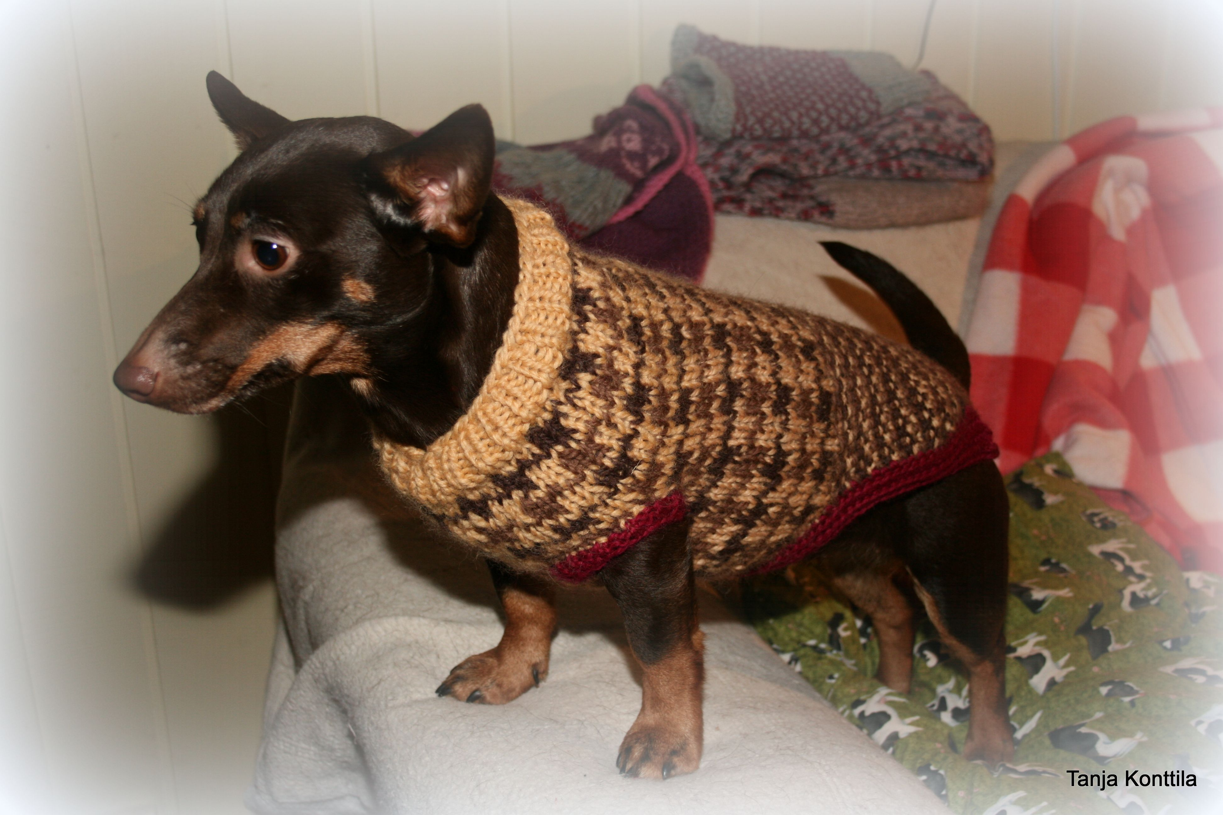 Dogs Houndstooth jumper | Hand knitted/crocheted tartan and tweed ...