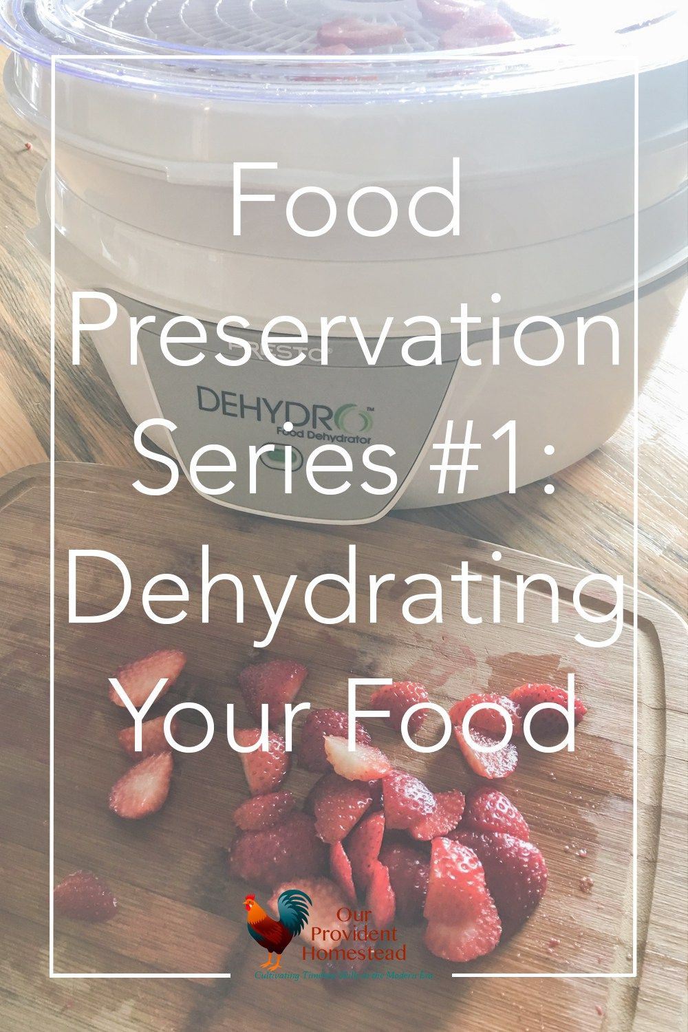 Food Preservation Series 1 Dehydrating Your Food
