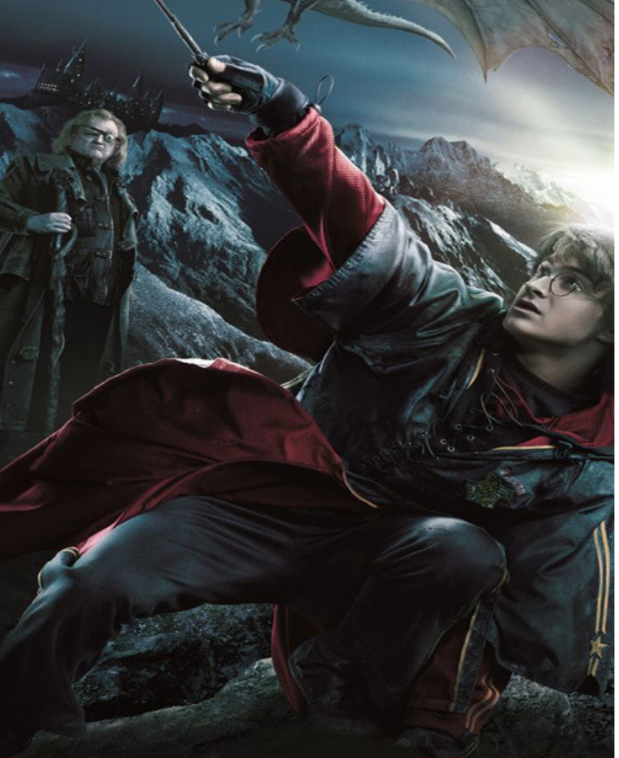Harry Potter and the Goblet of Fire Harry potter tumblr