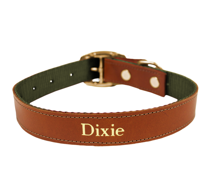 Shown in Bridle Leather with Forest Green Webbing