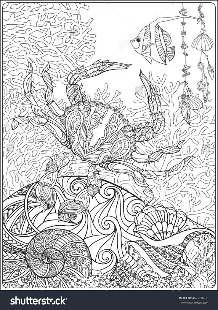 Coral Fish And Sea Shells Coloring Page For Adults Shutterstock 462750496