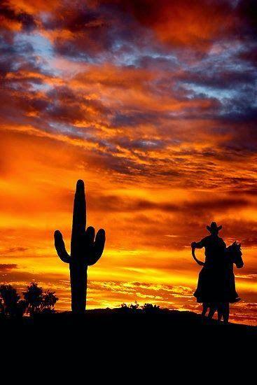 Stunning Silhouette Shots , Wild Wild West