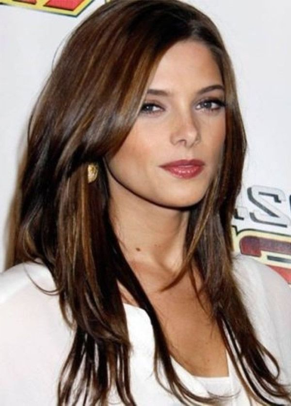 cortes pelo largo estilo ashley greene