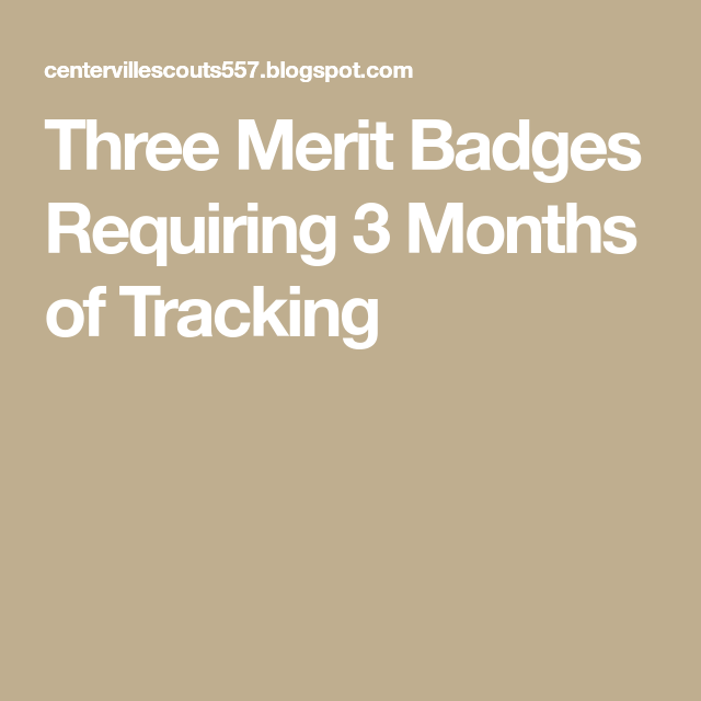 Three Merit Badges Requiring 3 Months of Tracking | boy