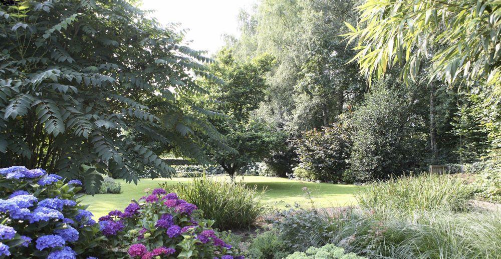 Bomen In Tuin : Image result for bomen tuin randari tuin