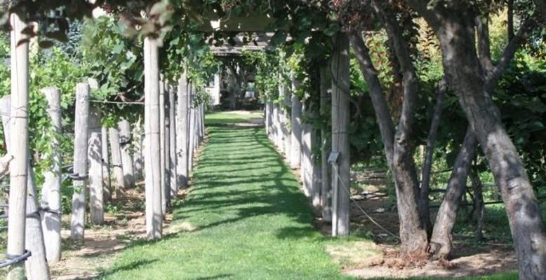 Sandstone Vineyards In Kuna Idaho Is An Amazing But Little Known Wedding Venue