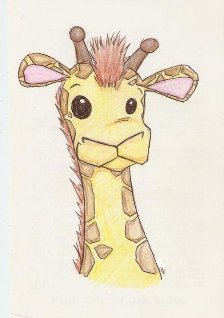 Giraffe Tumblr Google Search Giraffe Giraffe Drawing Cute