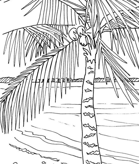Coloring Pages Of Le Trees : Tropical beach vacation adult coloring page by