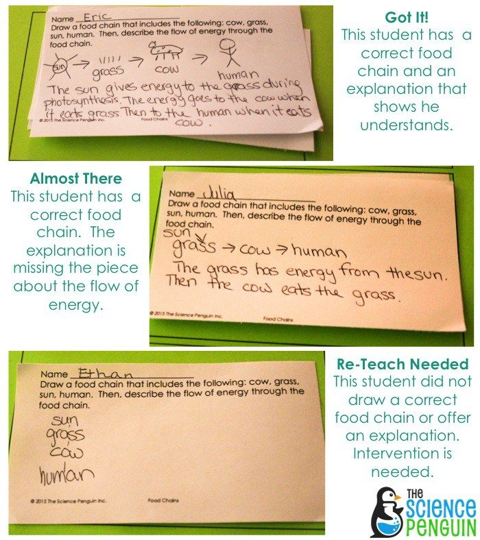 How to (Quickly) Use Exit Slips Teacher, Common cores and School - formative assessment strategies