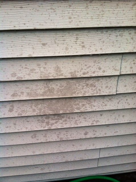 How To Clean Grease Stains Off Vinyl Siding Leslie S How
