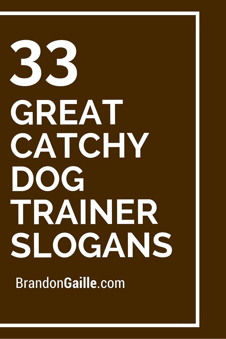 75 Great Catchy Dog Trainer Slogans Slogan Catchy Slogans Dogs