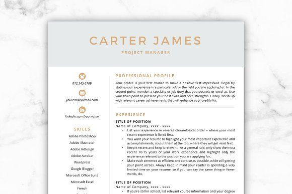 CV Template/Resume - Carter by@Graphicsauthor Resume CV Templates - resume form
