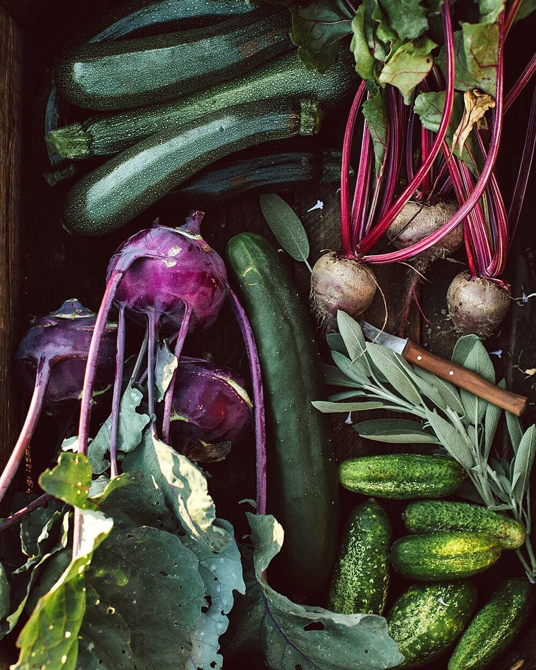 Yesterday S Harvest Was A Nice One Our First Beets For This Year Kohlrabi Cucumbers For Salad And For Pickling A Lot Of Home Grown Vegetables Zucchini Beets