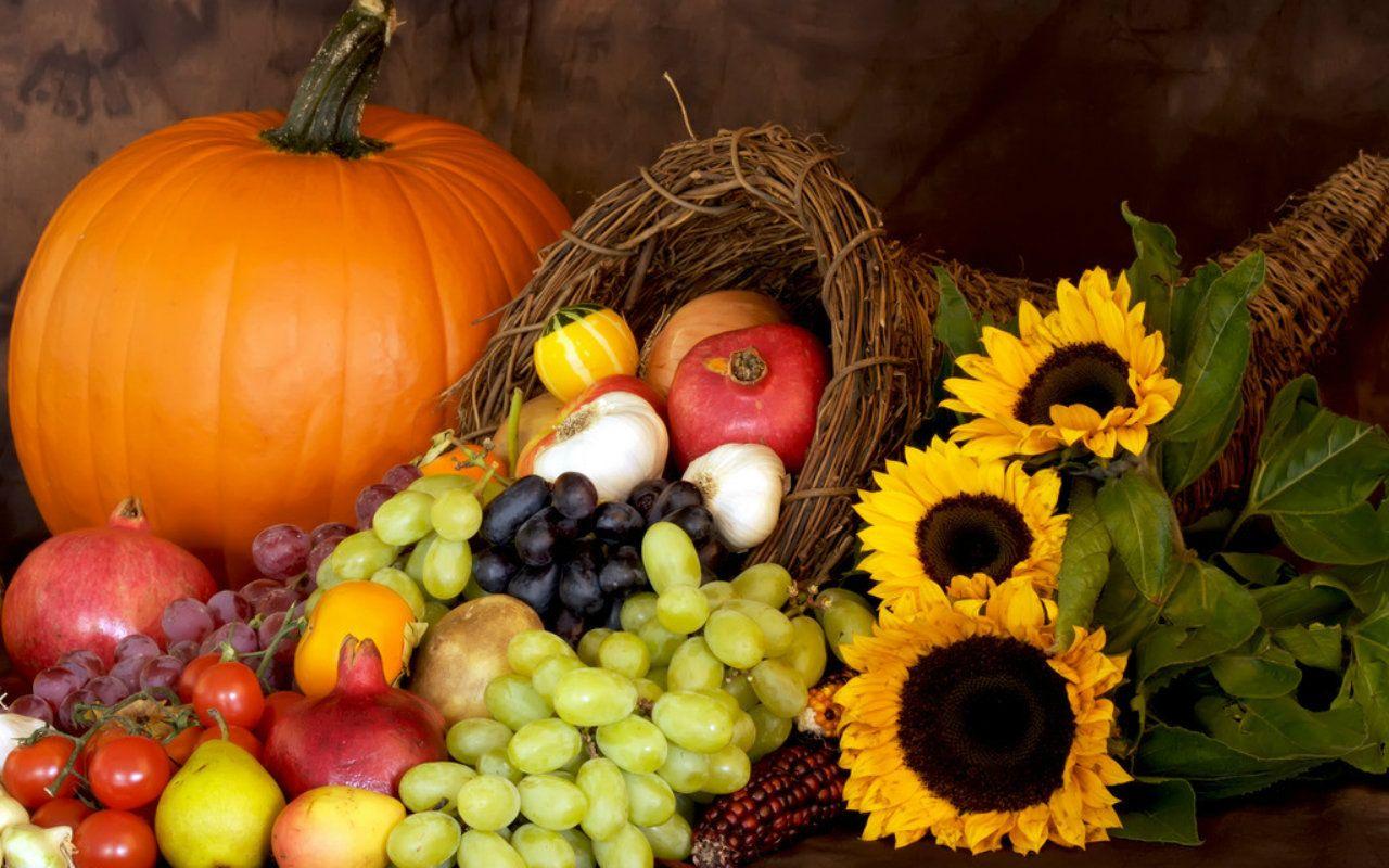 Harvest Fall wallpaper best photo