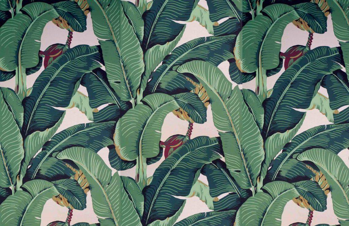 Martinique Wallpaper Beverly Hills Hotel Wallpaper Palm Leaf Wallpaper Palm Wallpaper