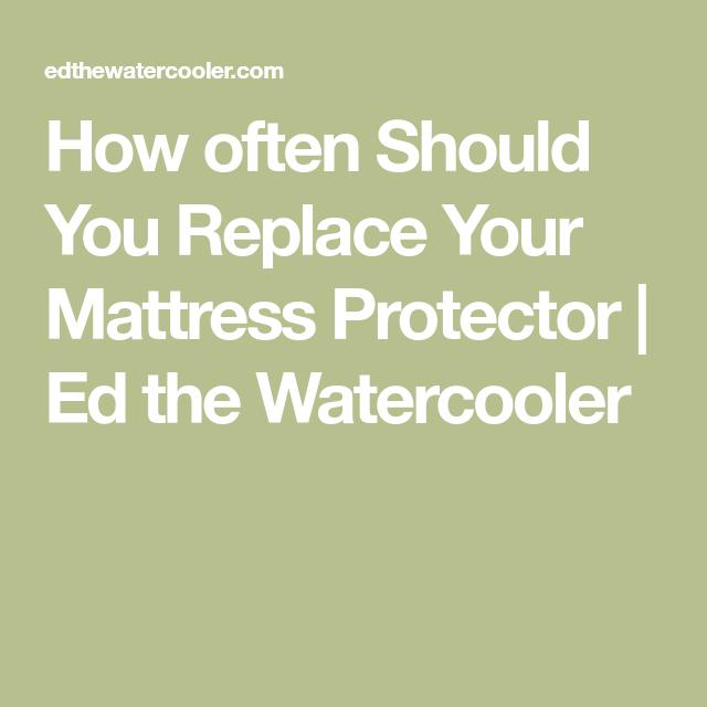 How Often Should You Replace Your Mattress Protector Ed The Watercooler Mattress Protector Mattress Bleach Alternative