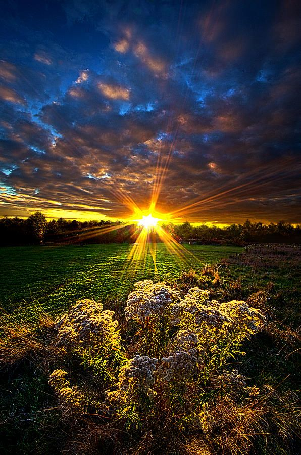 Days Gone By Photograph by Phil Koch