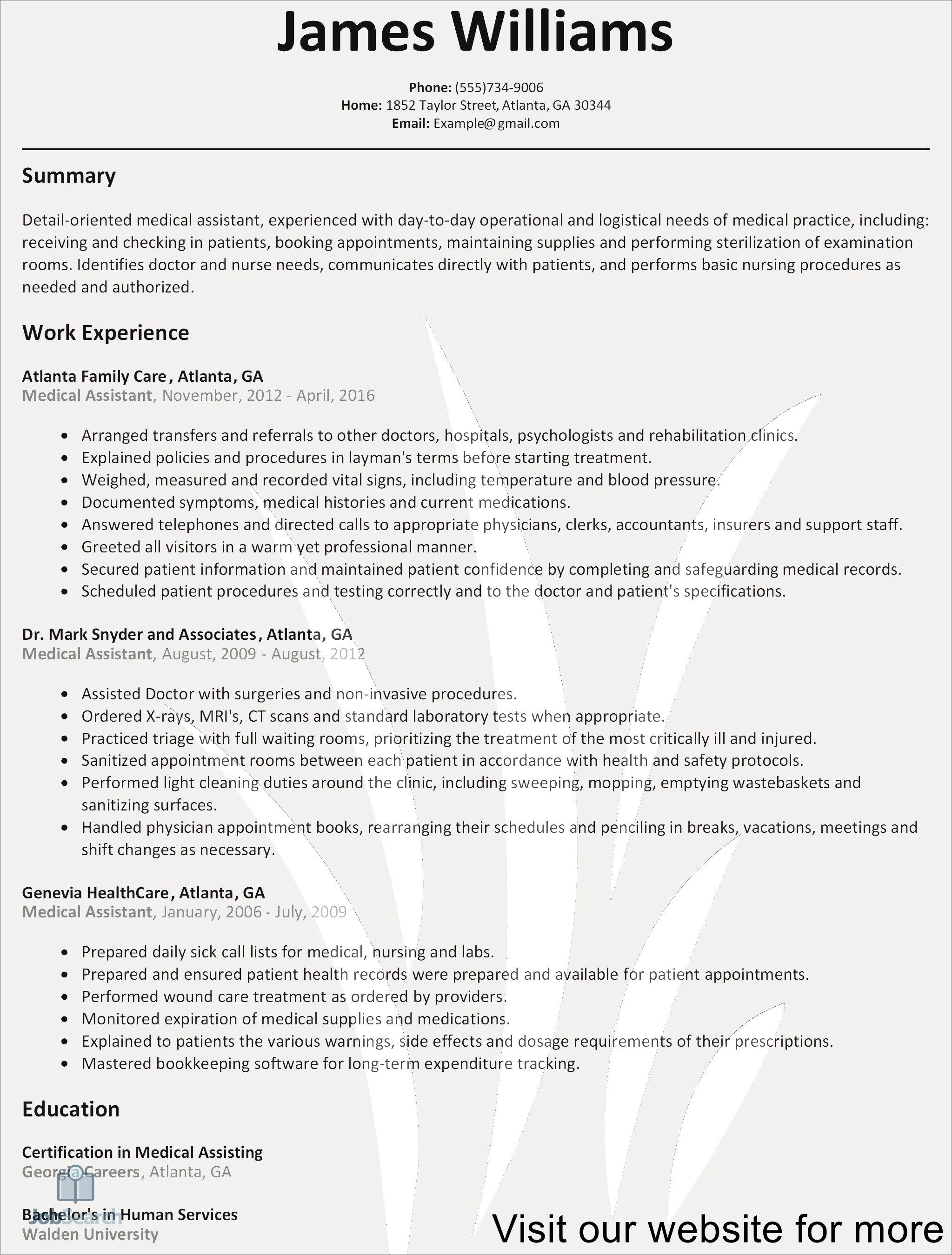 Example Resume Format 2020