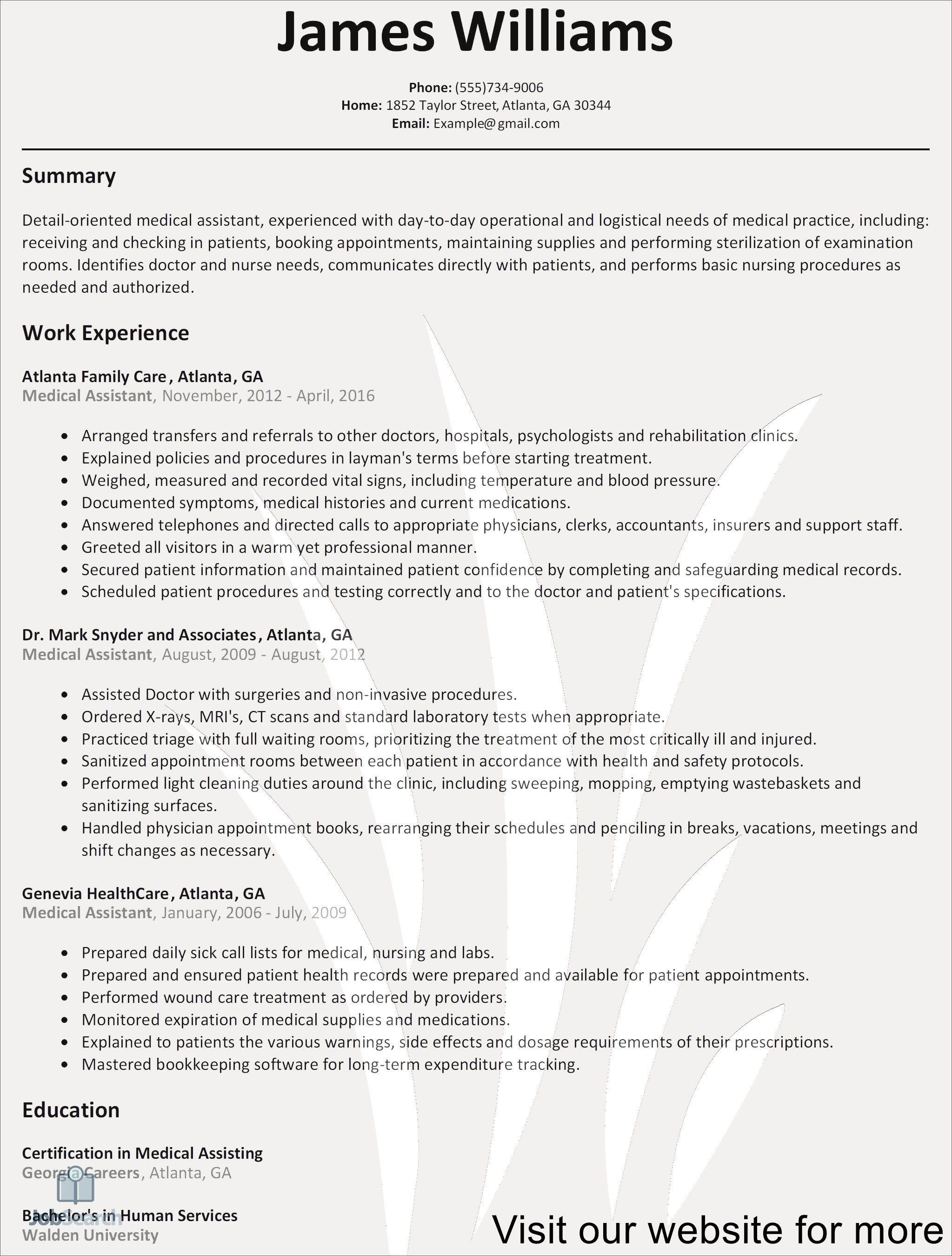 resume template australia Best in 2020 Basic resume